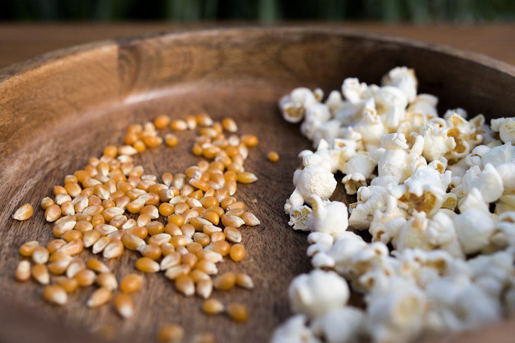 Kukuřice na popcorn