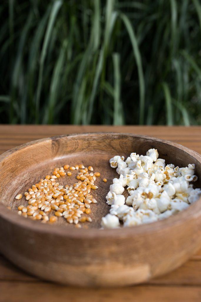 Kukuřice na výrobu popcornu BUTTERFLY